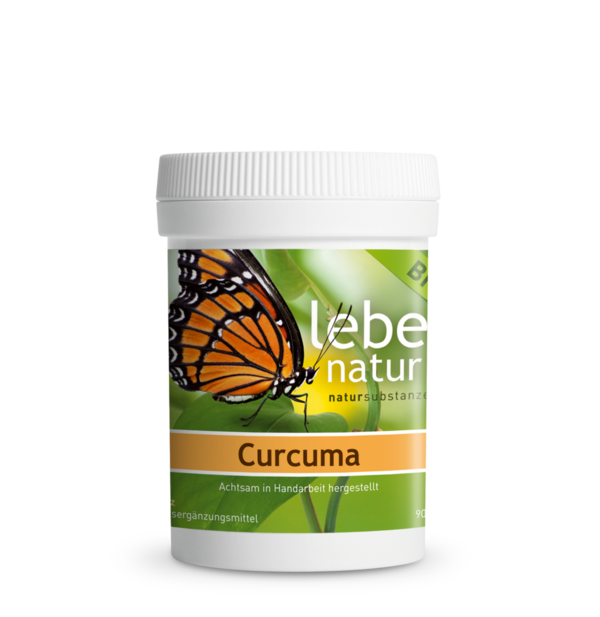 Curcuma  90 KPS à 450 mg AT-BIO-301 lebe natur®